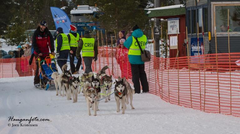 Det er kjempefint å ta turen til Drevsjø på morningen/formiddagen og få med seg aktiviteteten ettersom spannene drar i vei.