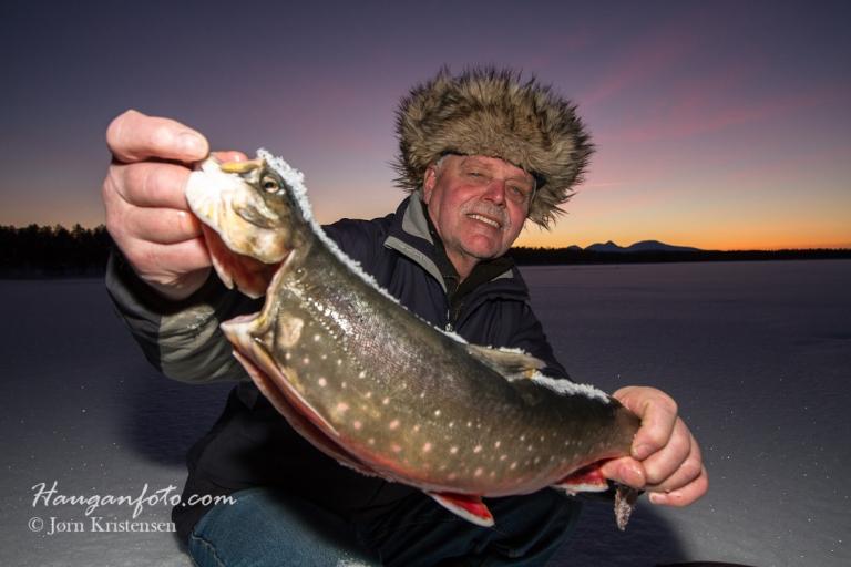 """Men så ringte Steinar og lurte på om jeg ville ta bilde av fangsten hans, og da stakk han også av med """"Dagens Sølen"""", helt klart! Røye på 1,8 kg. (Han fikk mange flere fine feite fisker, men denne var størst)."""