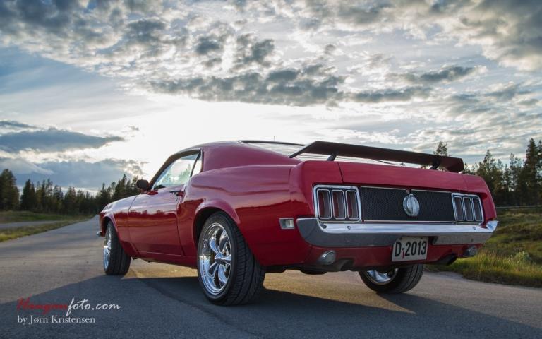 In to the light. Mustang i motlys er ikke feil. Her har vidvinkelen kommet på igjen. 20 mm, f-5,6, 1/200 iso 100.