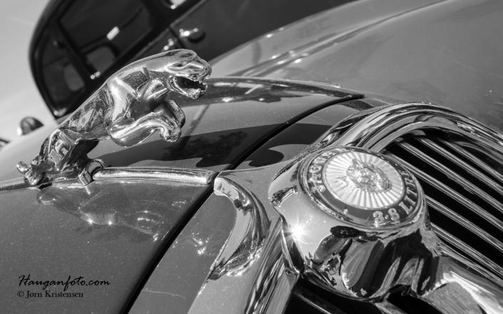 Jaguardetaljer