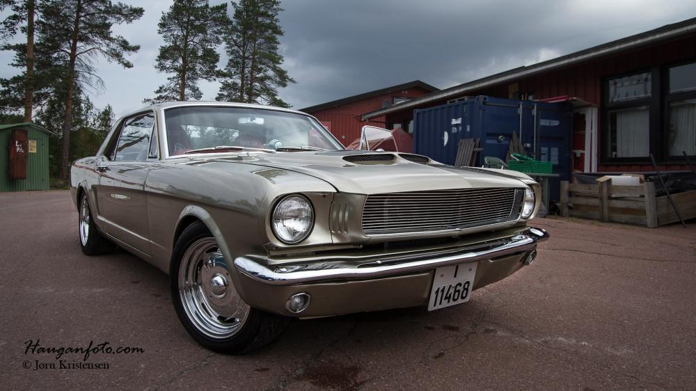 Riktig pen Mustang.