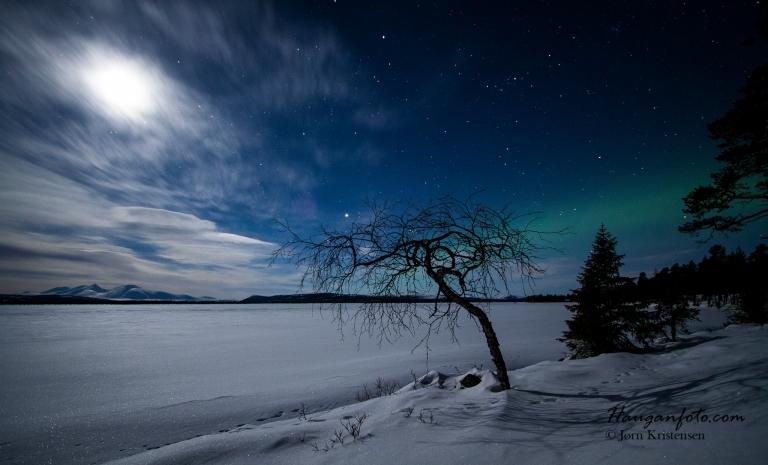 Har også noen nordlysnetter fra samme område. Her er både fotobjørka, nordlys og månen med :-)