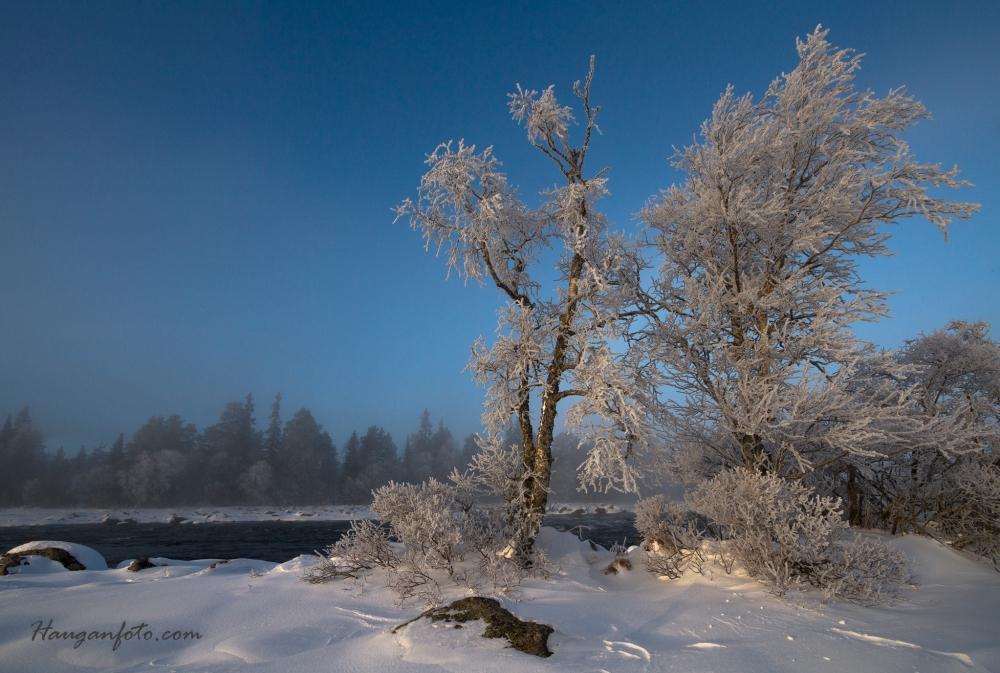 Det ble mye motlysbilder i frostrøyken, men dette er da altså medlys, og er en klar favoritt fra turen.
