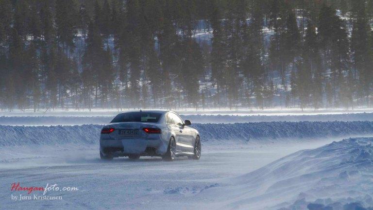 Audi i morgendis.