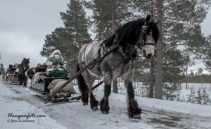 Dette bildet er fra Drevsjø der forkjørerne på vei til Røros hadde en pit-stop.