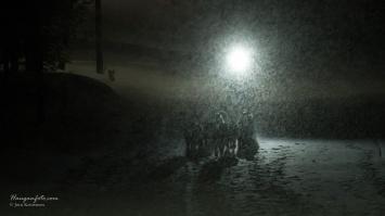 Vind, snø og motlys. Krevende, men artige fotoforhold.